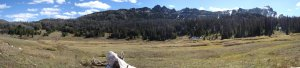 Elk country means wide open spaces.